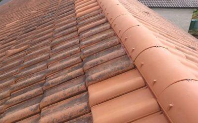 Gestern waren wir im wunderschönen Straubing  bei einer Dach…