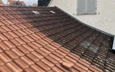 Hauseigentümer aufgepasst   Ihr Dach verdunkelt sich immer …
