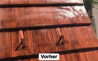 Ein Tegalit-Ziegel mit unserem Dach-Liquid eingesprüht und n…
