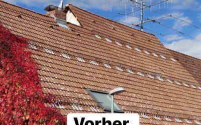 """Vor ca. 1 Jahr hat unser Team ein Beton-Dach """"Frankfurter Pf…"""
